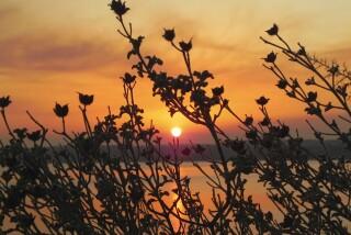 sunset and moon Stella Vineyard studios kefalonia-23